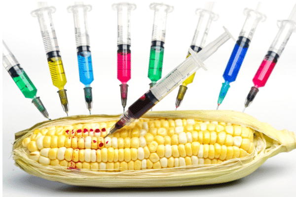 6 Shocking Facts About GMO's…and What To Do!