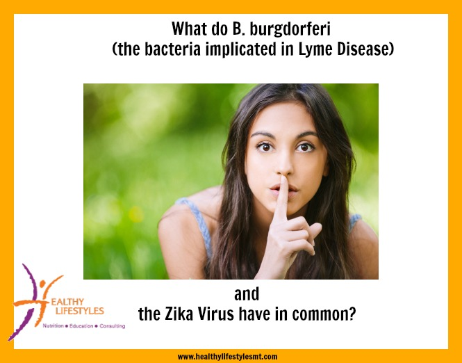 What B. burgdorferi (Lyme disease) and the Zika Virus have in common